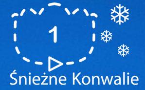 logo-Sniezne-Konwalie
